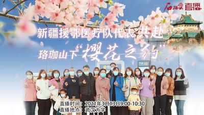 """新疆援鄂医疗队代表赴武汉""""樱花之约"""""""