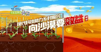 现代科技助力乡村振兴 向沙漠要效益