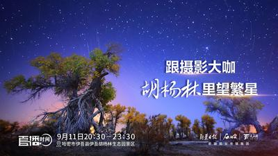 跟摄影大咖胡杨林里望繁星