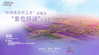 """石榴云""""走进乡村看小康""""丨""""中国薰衣草之乡""""霍城县""""紫色经济""""正芬芳"""